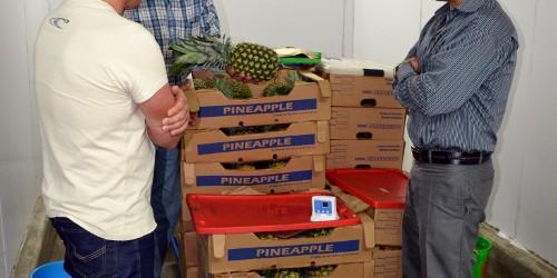 Agricultores de Cartago reciben capacitación en cuidados poscosecha y manejo de plagas