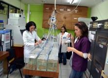 Curso sobre medición de biomarcadores fisiológicos de organismos  acuáticos para determinar el efecto de contaminantes en agua dulce finaliza con éxito