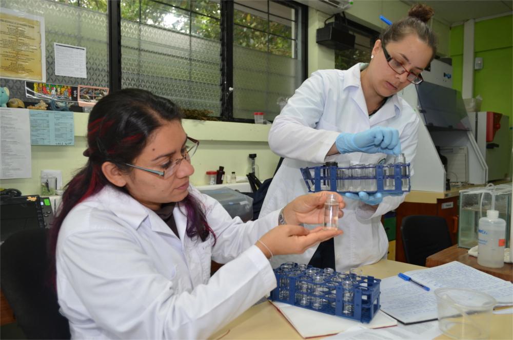 Las investigadoras Karla Ruiz Hidalgo (sentada) y Paula Alfaro Montero, muestran algunos de los organismos utilizados para determinar si existen niveles considerables de toxicidad en el agua y sedimentos en la quebrada Sanatorio.